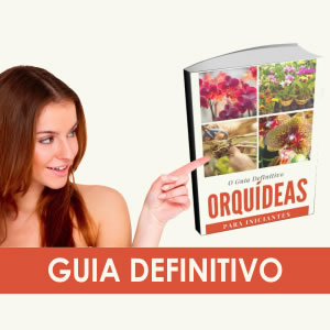 Manual de Orquídeas